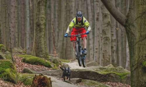 Trialy a bikeparky
